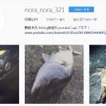 【fathomフィールドテスターNoraさん】 Instagram