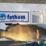 fathom LEVELハリスでの釣果 エギング&グルーパーゲーム【fathomフィールドテスターNoraさん】