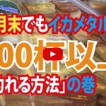 【fathom(ファゾム)スタッフ釣行動画】「9月末でもイカメタルで100杯以上釣れる方法」の巻