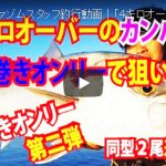 fathom|ファゾムスタッフ釣行動画|「4キロオーバーのカンパチをタダ巻きオンリーで狙い撃ち」の巻