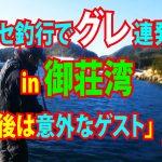 fathom|ファゾムスタッフ釣行動画|「カセ釣行でグレ連発 in 御荘湾 最後は意外なゲスト」の巻