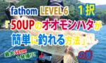 Fishing fathom|ファゾムスタッフ釣行動画|「50UPのオオモンハタが簡単に釣れる方法」の巻|RockFish GAME|Areolate grouper|宝石石斑鱼