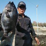 fathom 石鯛ライン【釣果】其の捌(八)
