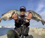 fathom LEVEL1.5号で神戸の和田防にチヌ釣りに行って来ました【中溝明利様】