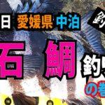 Fishing fathom|【7月7日】愛媛県 中泊『石鯛釣り』の巻