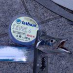 タチウオ釣りに最適!LEVELシリーズ【杉本隼一様】