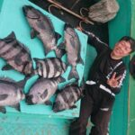 fathom 石鯛ライン【釣果】其の参拾捌(三十八)