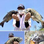 真夏のリバーチヌ釣り【中溝明利様】